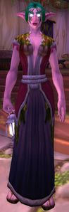 Image of Innkeeper Saelienne