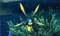 Image of Sapfly