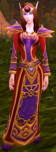 Image of High Elf Sorceress
