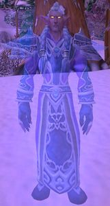 Image of Kaldorei Spirit