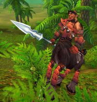 Image of Kurak