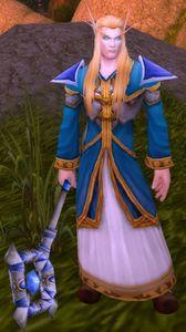 Image of High Elf Mage-Priest