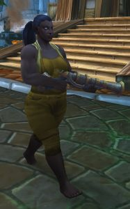 Image of Stormwind Entertainer