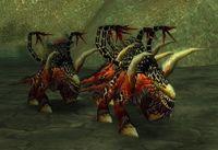 Imagen de Can de la Legión