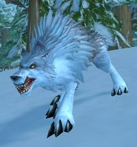 Image of Ragged Young Wolf