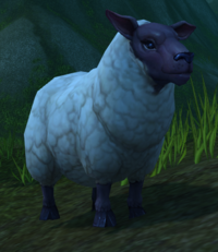 Image of Docile Sheep