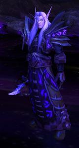 Image of Void Warlock