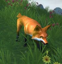 Image of Coppertail Fox