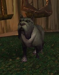 Image of Dragonflayer Hunting Hound