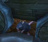Image of Giant Sewer Rat