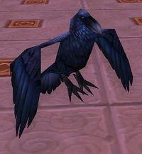 Image of Gilnean Raven