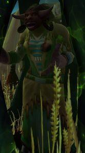 Image of Plains Traveler