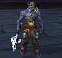 Image of Veteran Wingrider