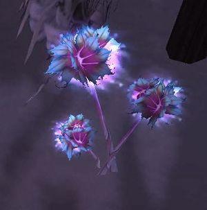 Frost lotus node.JPG