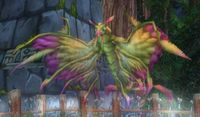 Image of Amani Dragonhawk Spirit