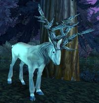 Image of Moongraze Stag