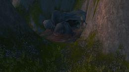 Drywhisker Gorge.jpg