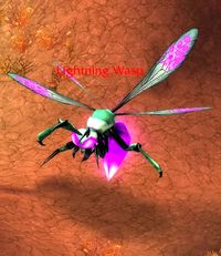 Image of Lightning Wasp