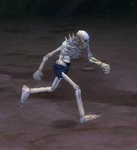 Image of Splinterbone Skeleton