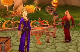 Townhall TBC Blood elves1.jpg