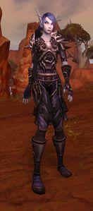 Image of Dark Ranger