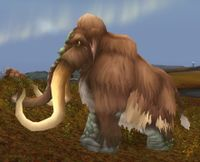 Image of Wooly Mammoth Bull