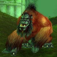 Image of Groddoc Ape