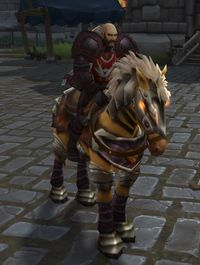 Image of Knight-Captain Wrenn