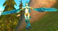 Image of Windfury Sorceress
