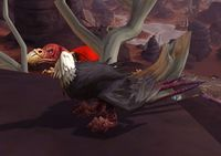 Image of Canyon Vulture