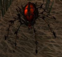 Image of Darkmist Widow