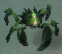 Image of Crab Hatchling