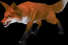 Fox.png