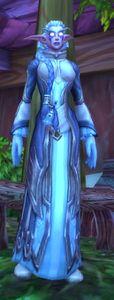 Image of Astranaar Priestess
