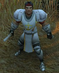 Image of Theramore Commando