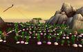 The Rows turnips.jpg