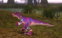 Image of Mottled Raptor