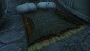 Fur Blanket.jpg