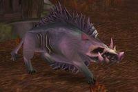 Image of Plagued Swine