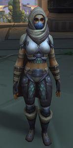 Image of Wastewander Warrior