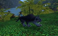 Image of Jungle Panther
