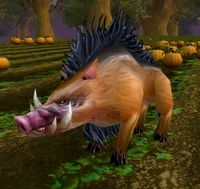 Image of Snoot the Rooter