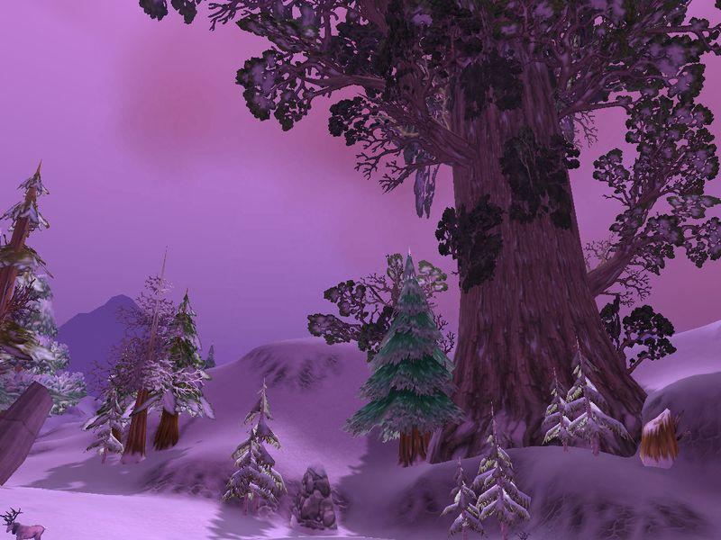 File:Winterspring.jpg