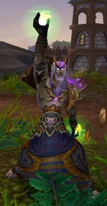 Image of Stormshield Druid