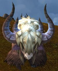Image of Escaped Yak