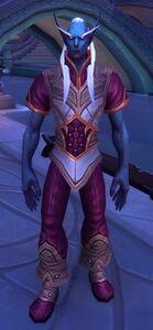 Image of Shal'dorei Servant