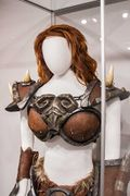 Blizzard Museum - Armory41.jpg