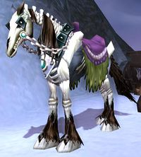 Image of Skeletal Mount