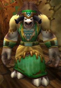 Image of Chief Spirithorn