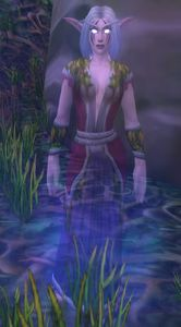 Image of Ghostly Night Elf Celebrant